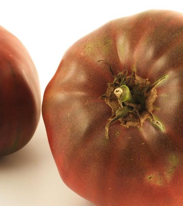 11_tomate_diapo5