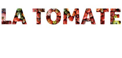 Les tomates (mange des tomates mon amour)