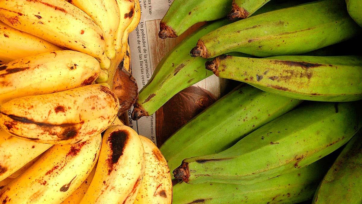 2_banane_diapo0