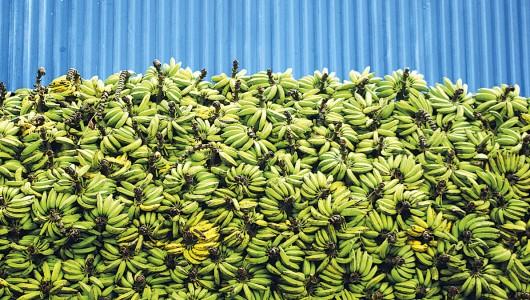 2_banane_diapo3